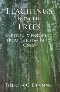 Teaching from the Trees by Theresa Dintino
