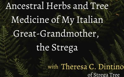 Event: Ancestral Herbs and Tree Medicine of My Italian Great-Grandmother, the Strega